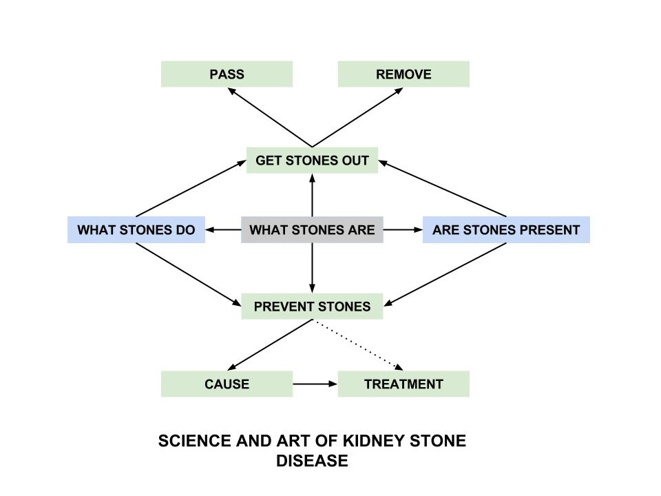 Kidney stone disease kidney stone evaluation and treatment program kidney stone disease ccuart Image collections